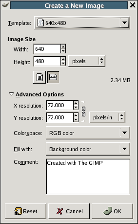 New Image dialog (Advanced Options)