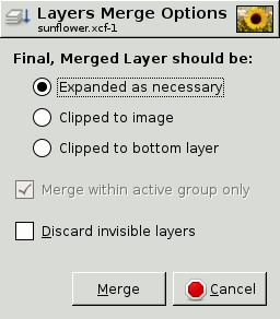 The Layers Merge Options Dialog