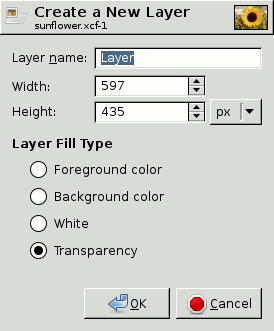 The New Layer dialog