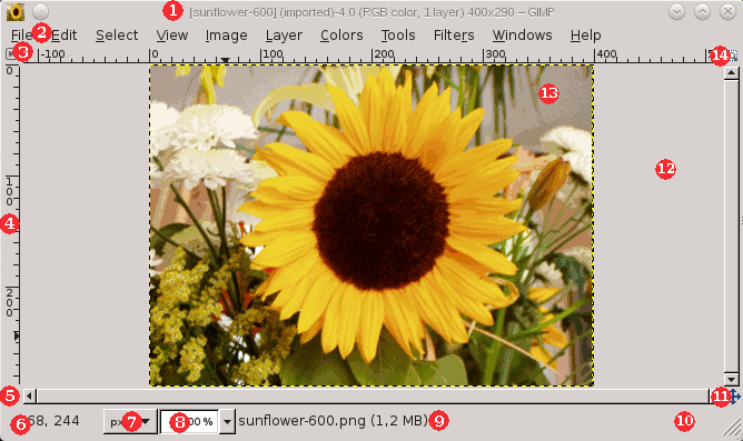 The Image Window in Multi-Window Mode