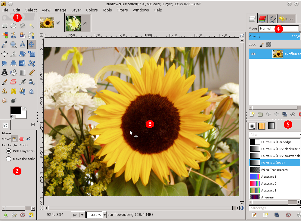 A screenshot illustrating the single-window mode.